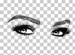 Eyebrow Cosmetics Microblading Eyelash PNG
