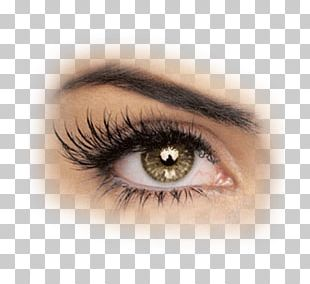 Eyelash Extensions Beauty Parlour Artificial Hair Integrations Hairstyle PNG