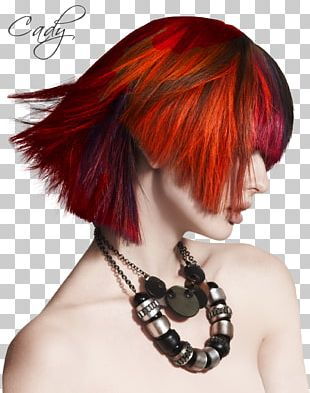 Hair Coloring Hairstyle Human Hair Color PNG