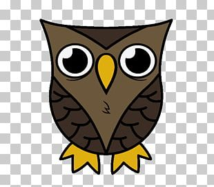 Owl Drawing Cartoon Sketch PNG