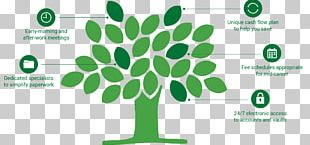 Fruit Tree Video Game Company Wood PNG