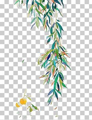 Watercolor Painting Leaf Twig PNG