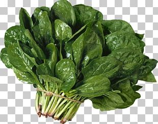 Vegetarian Cuisine Leaf Vegetable Spinach Salad PNG