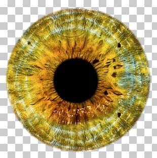Eye Lens PNG