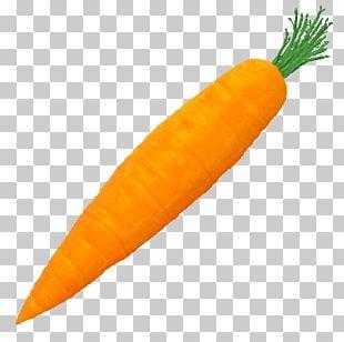 Carrot Vegetable Vegetarian Cuisine Food PNG