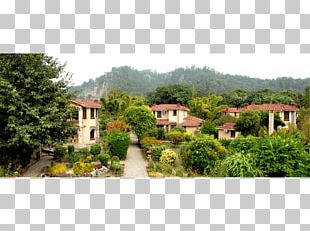 Property Residential Area Garden Tree PNG