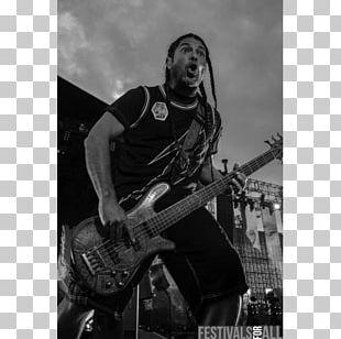 Musician Bass Guitar Metallica Musical Instruments PNG