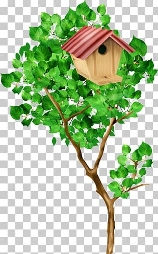 Tree Nest Box PNG