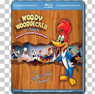 Woody Woodpecker Animated Cartoon Animated Film PNG