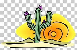 Cactus/ Cactus Open Saguaro PNG