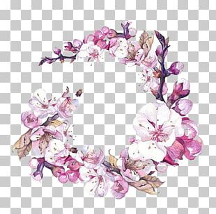 Watercolor Painting Flower Art Cherry Blossom PNG