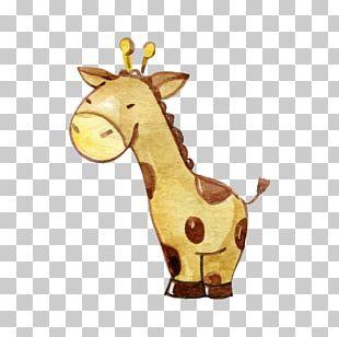 Northern Giraffe Watercolor Painting PNG