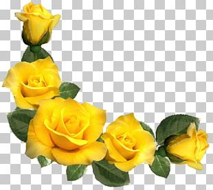 Rose Yellow PNG