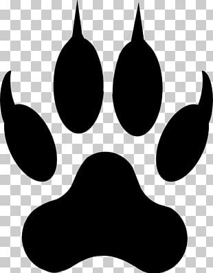 Dog Paw Cat Drawing PNG