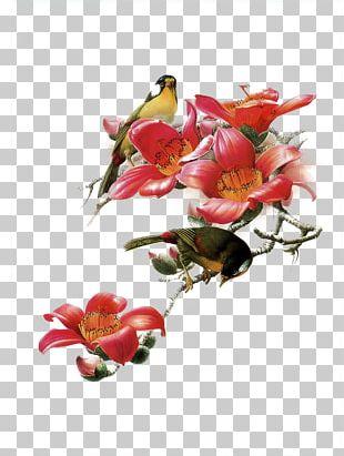 China Bird Art Painting Painter PNG