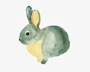 Hand-painted Watercolor Rabbit PNG