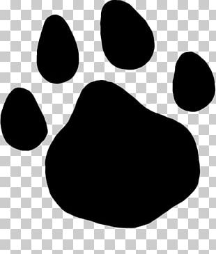 Paw Cat PNG