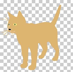 Cat Stock Photography Kitten Felidae PNG