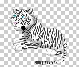 Whiskers Cat Felidae White Tiger Siberian Tiger PNG