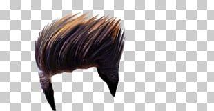 Hairstyle PicsArt Photo Studio Editing Portable Network Graphics Wig PNG
