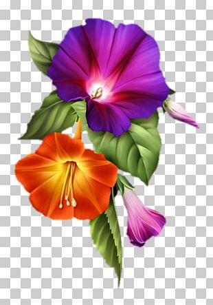 Flower Painting Pansy Floral Design Art PNG
