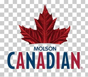 Molson Brewery Beer Lager Molson Coors Brewing Company PNG