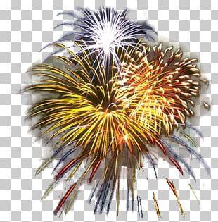 Fourth Of July Celebration Fireworks PNG