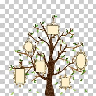 Family Tree Euclidean Illustration PNG