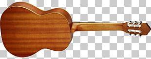 Ukulele Acoustic Guitar String Instruments Musical Instruments PNG