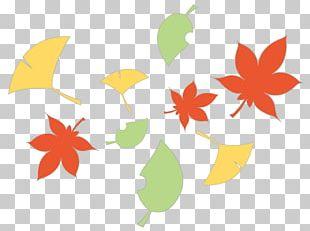 Autumn Season Illustration Summer Spring PNG