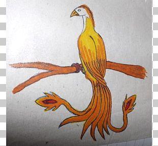 Painting Beak Feather Animal PNG