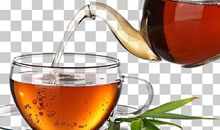Darjeeling Tea Green Tea White Tea Rooibos PNG