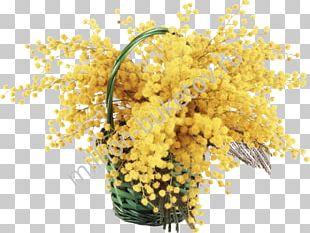Mimosa Flower Bouquet Desktop PNG