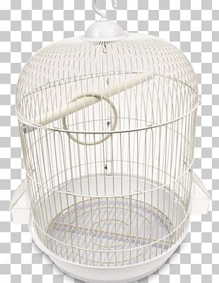Bird Cage True Parrot Budgerigar Domestic Canary PNG