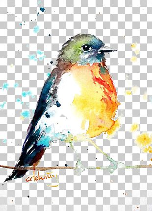 Bird European Robin Watercolor Painting Drawing PNG