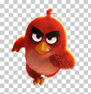 Angry Birds Movie Running Red Bird PNG