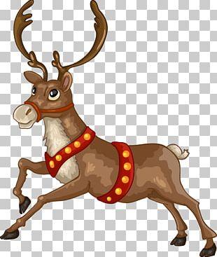 Santa Claus Reindeer Christmas Card Illustration PNG