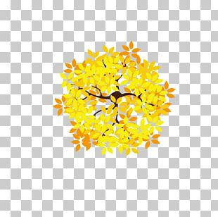 Leaf Tree Golden Leaves Euclidean PNG