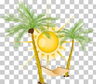 Coco Hammock Sun PNG
