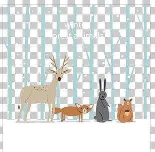 Reindeer Animal Winter PNG
