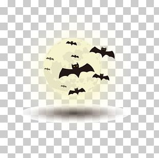 White Happy Halloween Happy Birthday Vector Images PNG