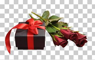 Valentine's Day Rose Happiness Gift Romance PNG