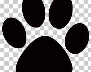 Dog Paw Graphics Cat PNG