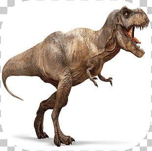 Tyrannosaurus Velociraptor Carnivores: Dinosaur Hunter Late Cretaceous PNG