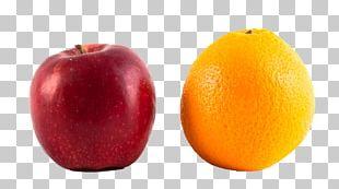 Blood Orange Grapefruit Diet Food Superfood PNG