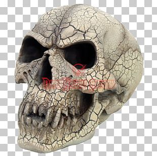 Vampire Skull Fang Human Skeleton PNG