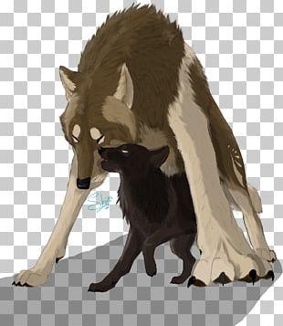 Artist Gray Wolf Work Of Art PNG