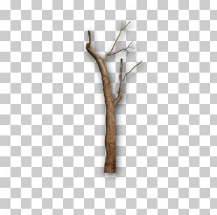 Gray Tree Twig Branch PNG