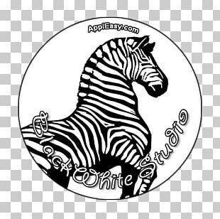 Horse Zebra Coloring Book ABC Book PNG