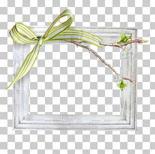 Frame Shoelace Knot PNG